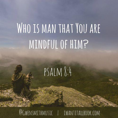 psalm 8.4
