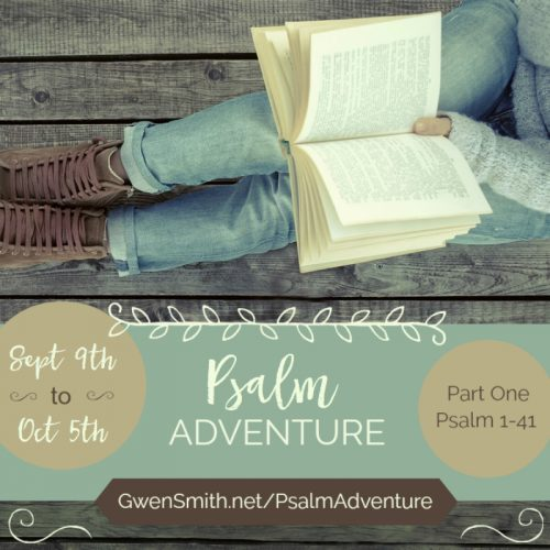 Psalm Adventure Online Bible Study